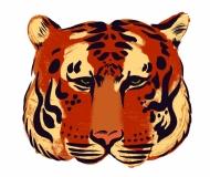 Tiger_ ( im Shop erhältlich )